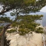 templemt photo